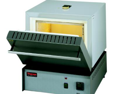 Furnace Thermo Scientific F6010